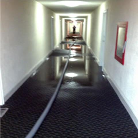 Carpet Pros Carpet Tile Cleaning Florida